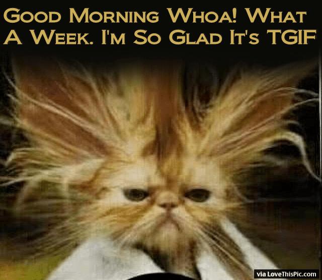 Good Tgif Morning Memes Funny