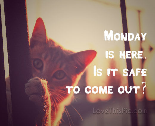 Monday Is Here Pictures Photos And Images For Facebook
