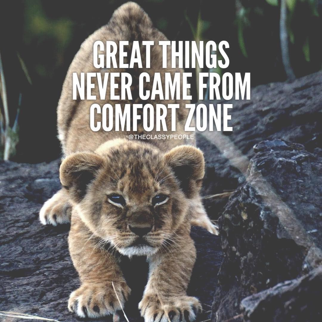 Great Things Never Came From Comfort Zone Pictures, Photos ... on Outstanding Things  id=96842