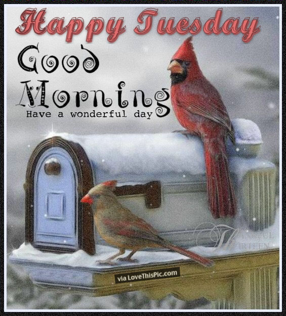 Winter Good Morning Tuesday Blessings