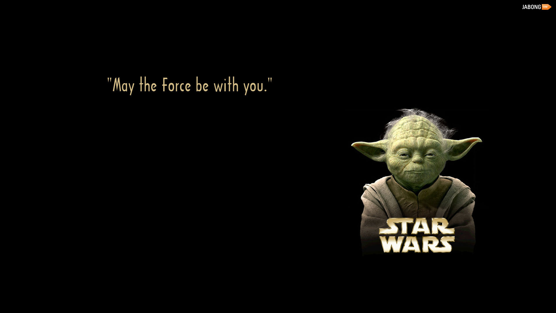 Image result for may the force be with you