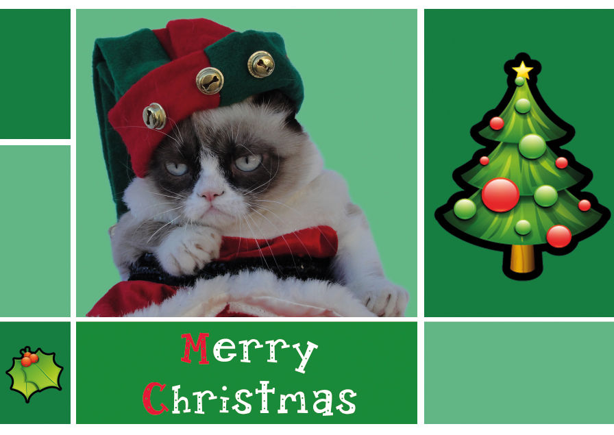 Merry Christmas From Grumpy Cat Pictures Photos And