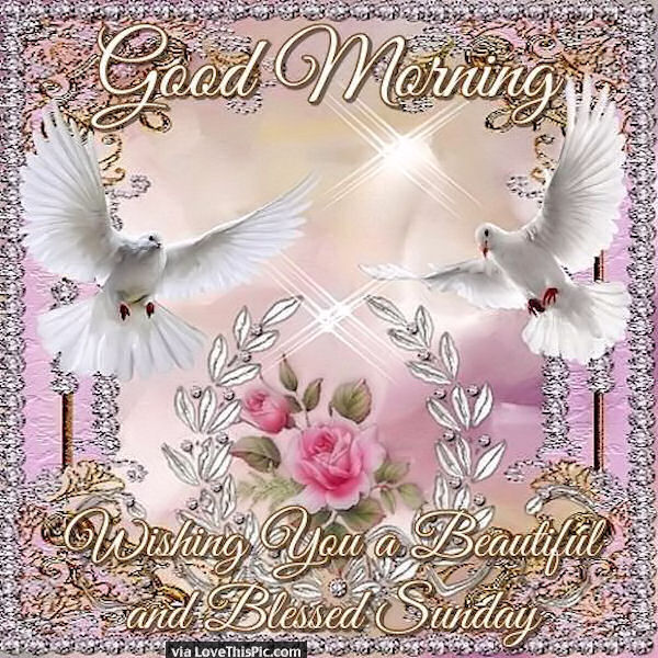 Good Morning Wishing You A Beautiful And Blessed Sunday