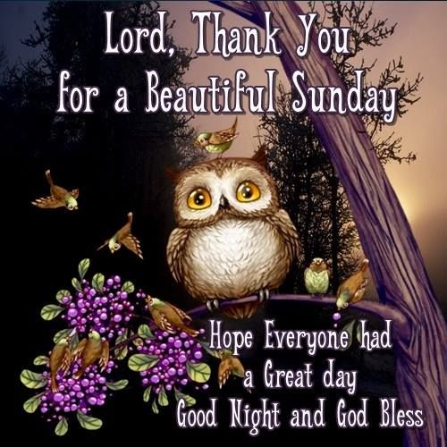 Lord Thank You For A Beautiful Sunday Goodnight Pictures ...