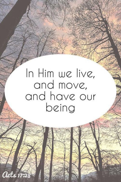 In Him We Live And Move And Have Our Being Pictures