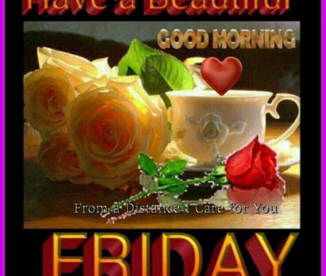 Have A Beautiful Friday Good Morning Quote With Roses