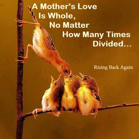 A Mother S Love Is Whole No Matter How It Is Divided Pictures Photos And Images For Facebook Tumblr Pinterest And Twitter