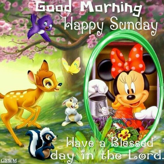 Disney Good Morning Happy Sunday Pictures Photos And