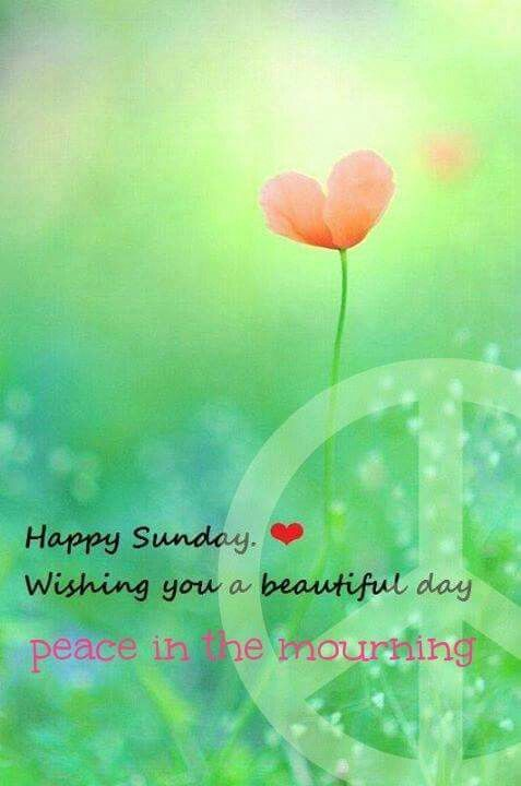 Happy Sunday Wishing You A Beautiful Day Peace In The Morning Pictures Photos And Images For