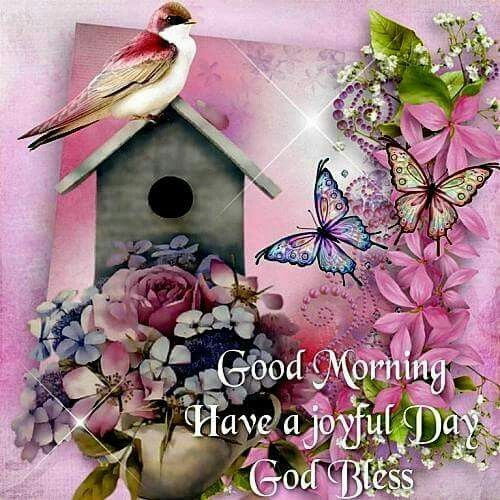 Good Morning Have A Joyful Day God Bless Pictures