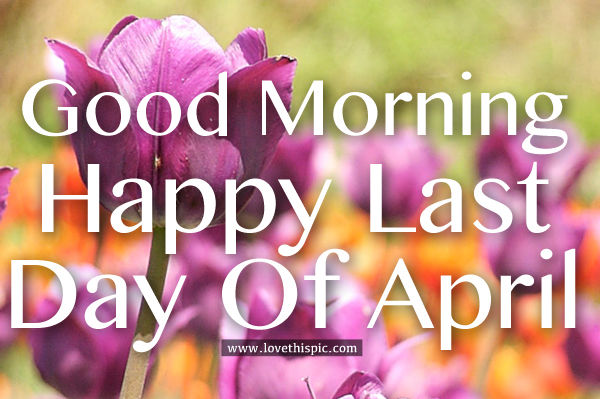 Good Morning Happy Last Day Of April Pictures Photos
