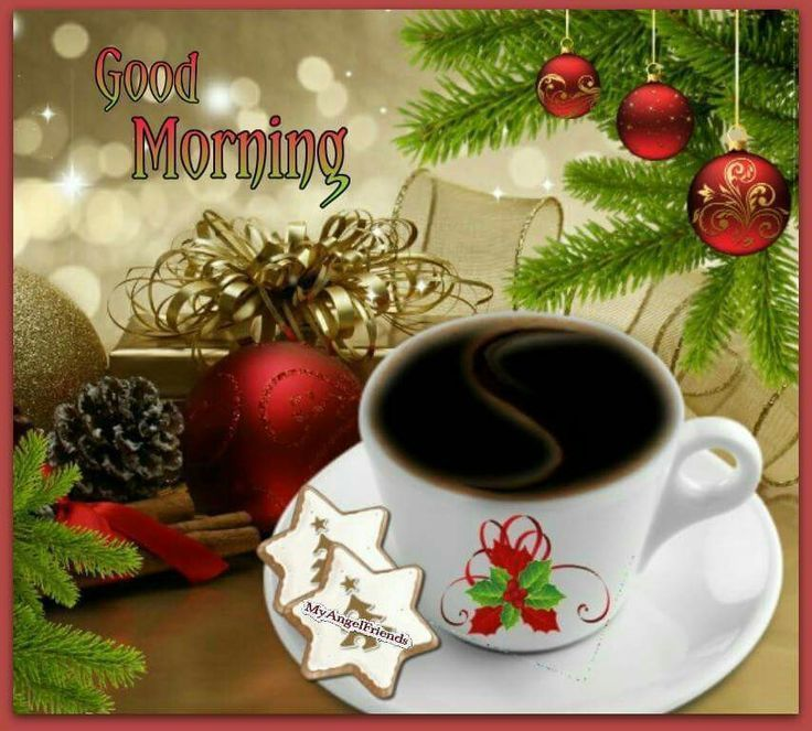 Good Morning Christmas Pictures Photos And Images For