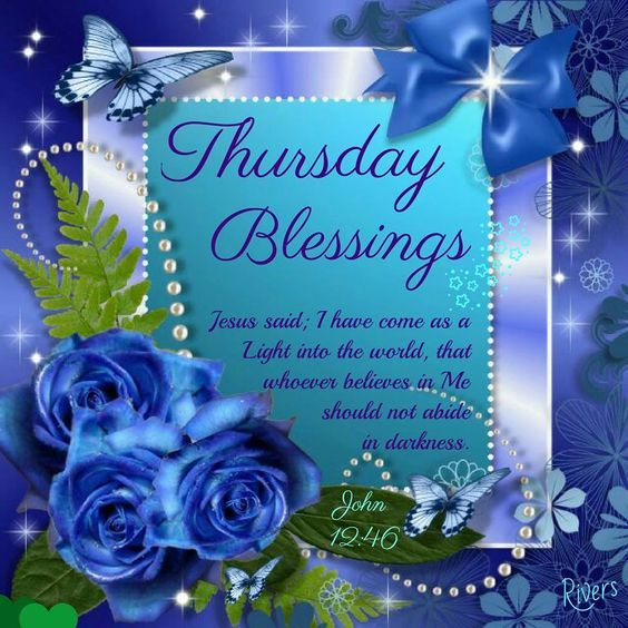 Blue Rose Blessings For Thursday Pictures Photos And