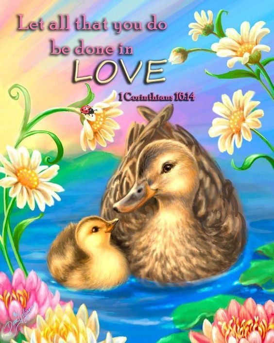Download Let All That You Do Be Done In Love Pictures, Photos, and ...