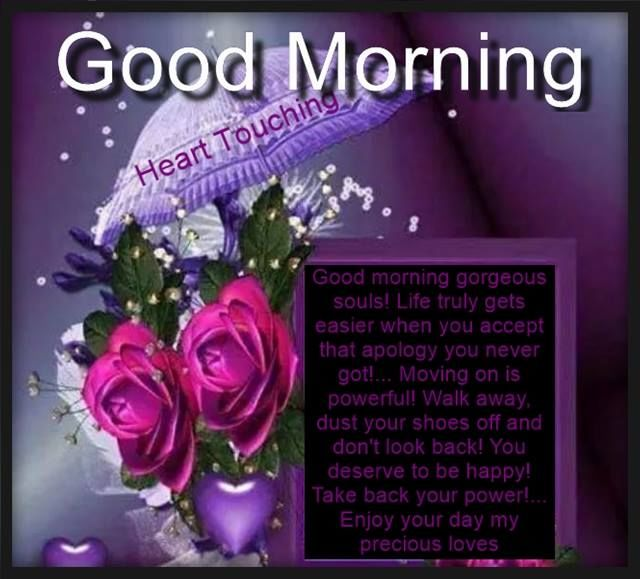Good Morning Gorgeous Souls Pictures Photos And Images