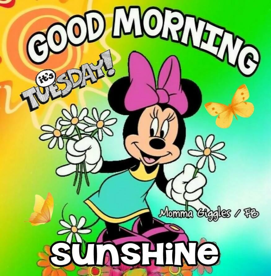 Minnie Mouse Good Morning Tuesday Pictures Photos And