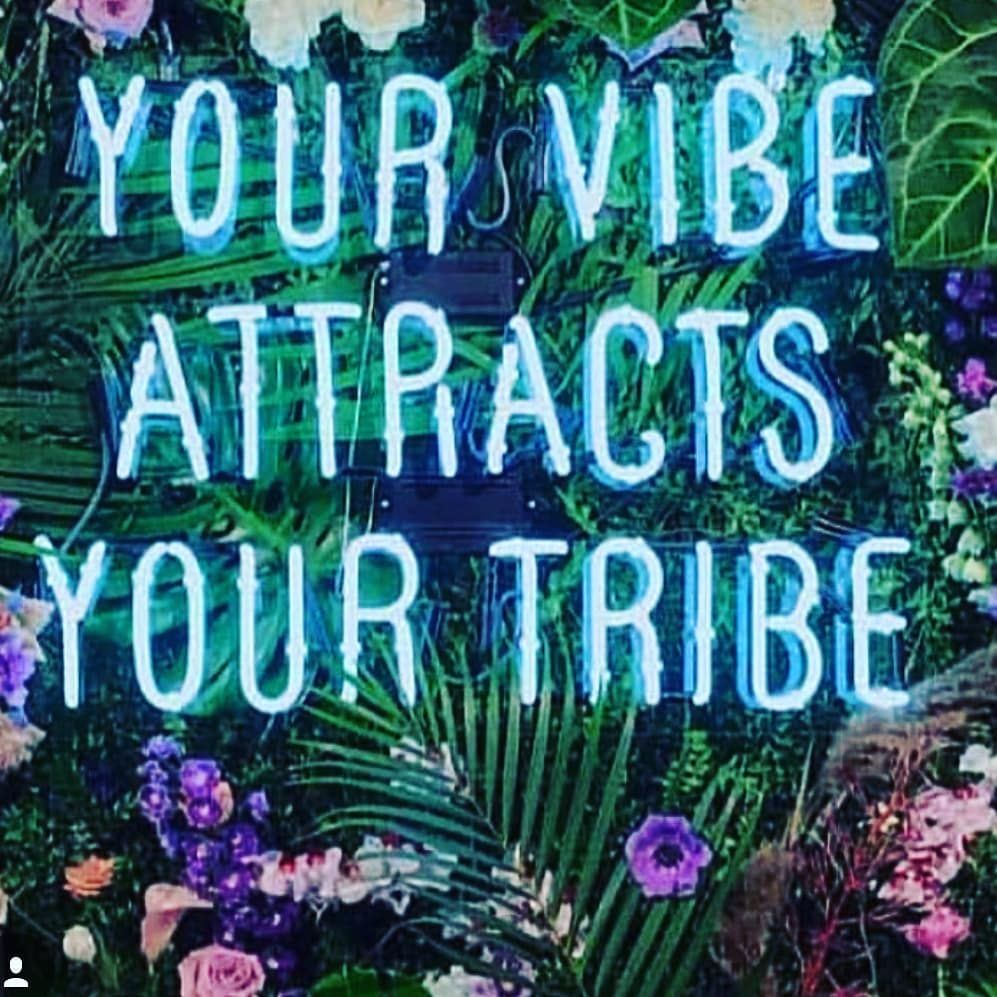 Your Vibe Attracts Your Tribe Pictures Photos And Images