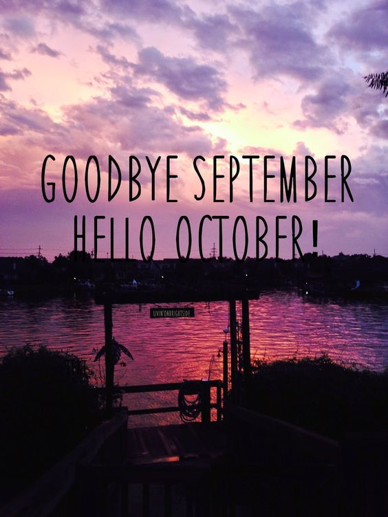 Quotes Goodbye Liar Sayings And