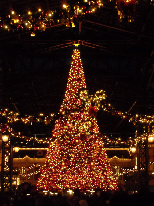 Christmas Tree At Tokyo Disneyland Pictures Photos And