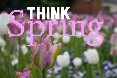Image result for Think Spring