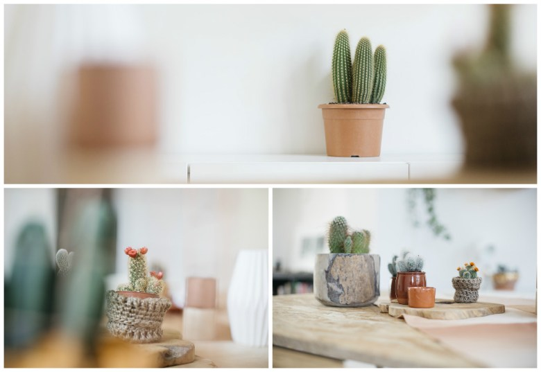 Lovetralala_shooting inspiration jolie table bohème cactus_05