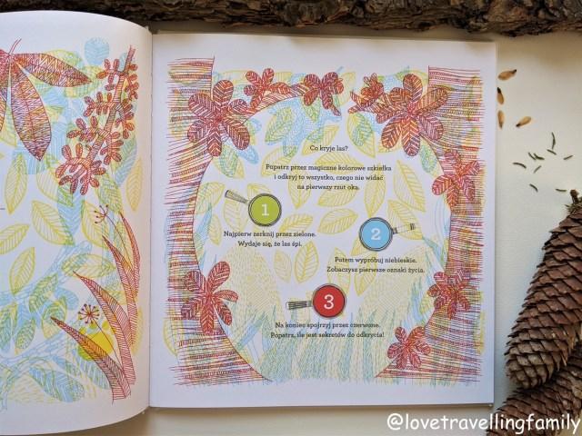 """""""Co kryje las?"""" Aina Bestard. Z dziećmi bliżej natury. Recenzja książki"""
