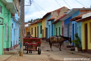 Horses, Trinidad