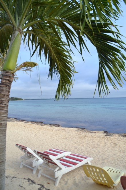 Beach, Playa Larga, Cuba