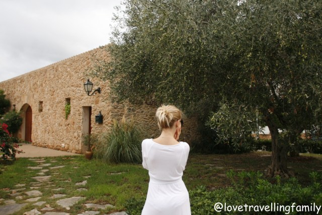 Olive tree & love travelling family Cala Rajada, Mallorca, Spain