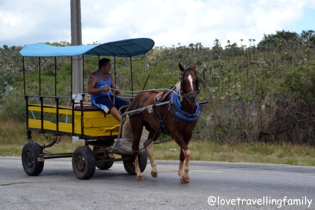 Horse carriage ride from Trinidad to Zipline Canopy adventure in Valle de los Ingenios