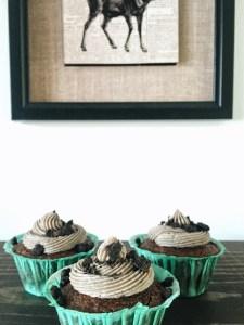 Vegan Noms cookie dough Plano blogger North Dallas Blog foodie cupcakes healthy