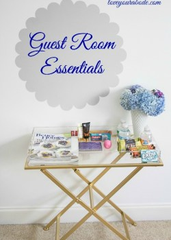 Guest Room Essentials at Orgjunkie