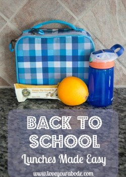 School Lunches Made Easy @ OrgJunkie
