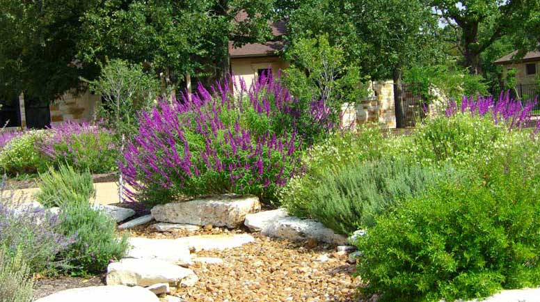 Gardens that attract birds and butterflys on Birds Backyard Landscapes  id=53222