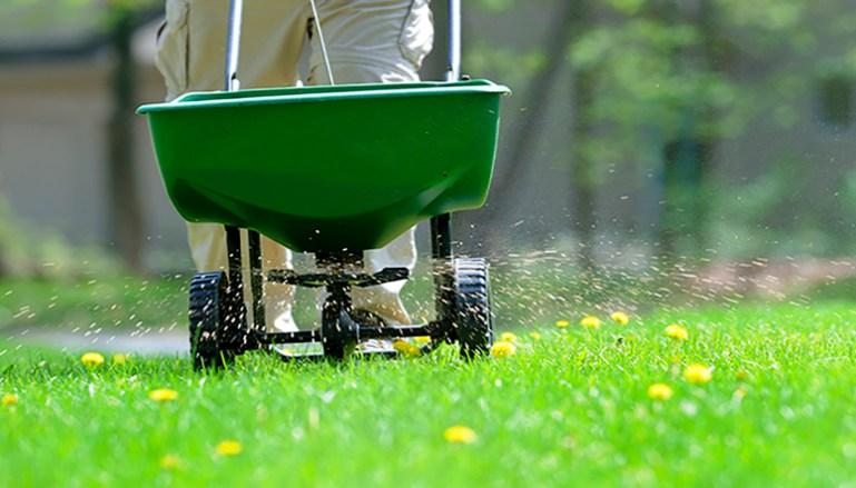 Fertilize Your Lawn