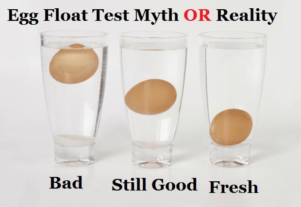 egg floating test