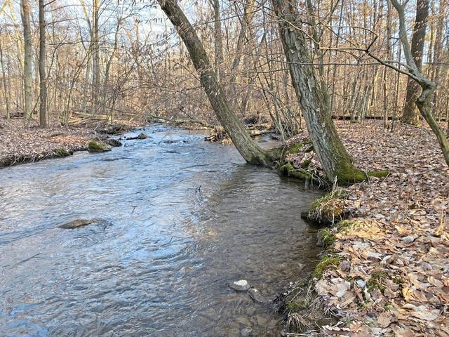 Part of the half-mile stretch of Mill Run in Ligonier Township that is protected by an easement that the Western Pennsylvania Conservancy recently acquired.                                 Part of the half-mile stretch of Mill Run in Ligonier Township that is protected by an easement that the Western Pennsylvania Conservancy recently acquired.