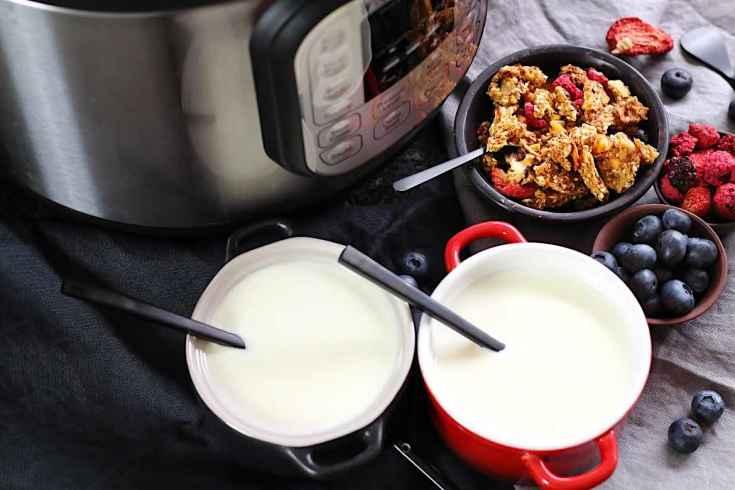 Instant Pot Keto Griechisches Joghurt