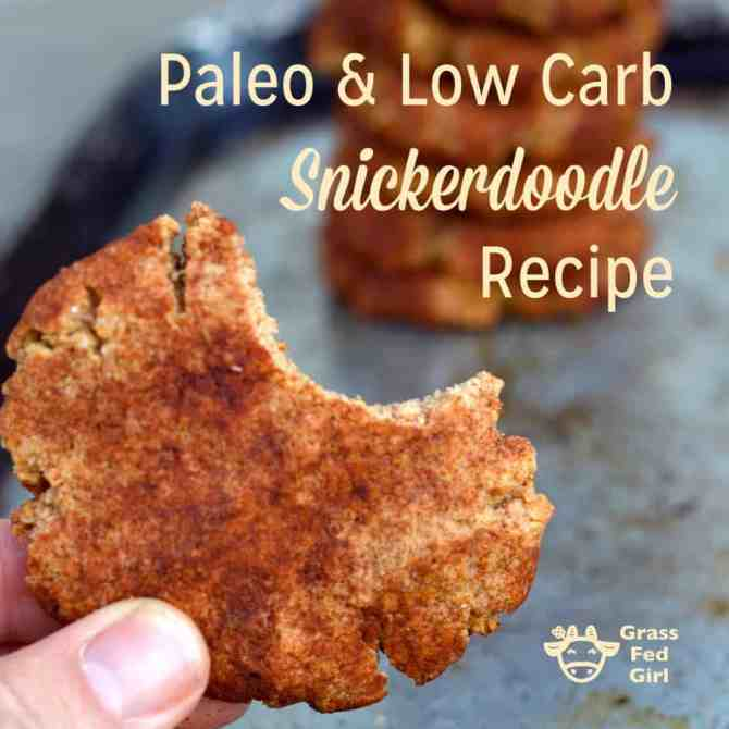 Paleo Low Carb Snickerdoodle