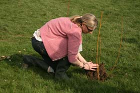 LCWO members, along with children from the local primary school and Woodcraft folk, have planted 620 new trees in Oatlands Road Recreation Ground and Botley Park.