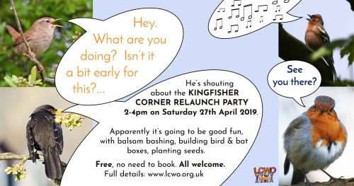 Kingfisher Corner relaunch party! Build a bat box and more @ Kingfisher Corner, far corner of Botley Park