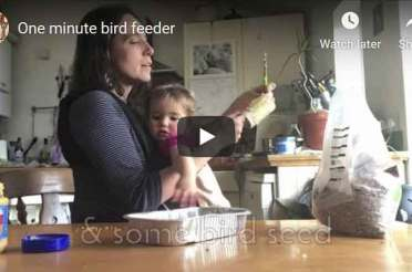 Beat the waste this winter: make your own crackers and get busy for the birds!