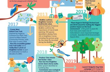 A history of LCWO wildlife activities to date (in a beautiful infographic) – plus how to get involved going forwards