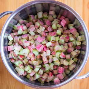 Rhubarb Chutney, Rhubarb in the Saucepan | Low-Carb, So Simple!