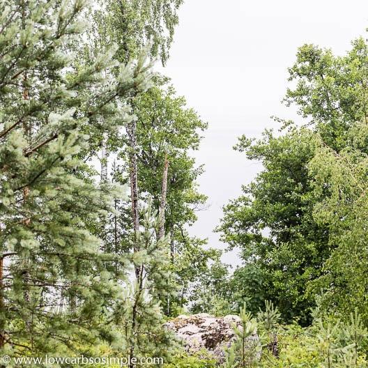Vuohijärvi Lake in Rain | Low-Carb, So Simple