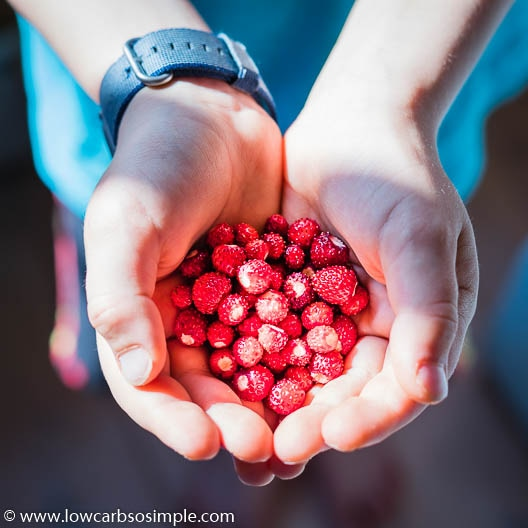 Wild Strawberries | Low-Carb, So Simple