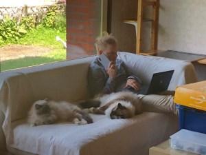 Ketokamu-Olli ja kissat