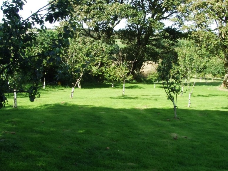 pic 1 surrounding trees and countryside