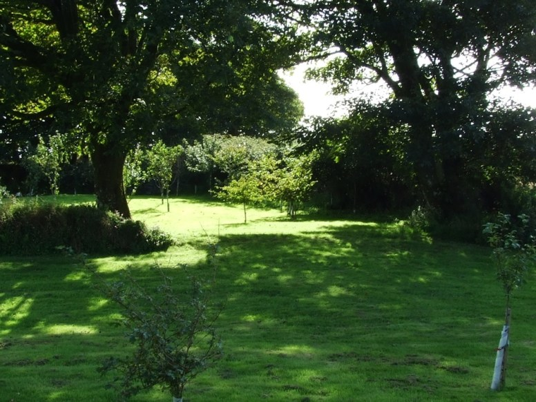 pic 9 surrounding trees and countryside