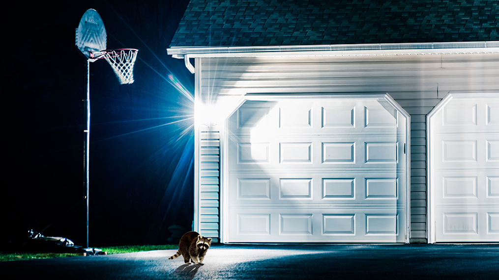 security lights buying guide lowe s